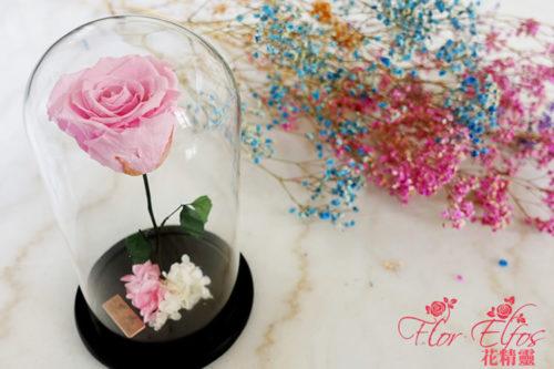 Flor-Elfos_1P-04