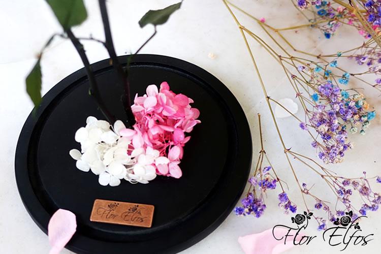 Flor-Elfos_P+W-04